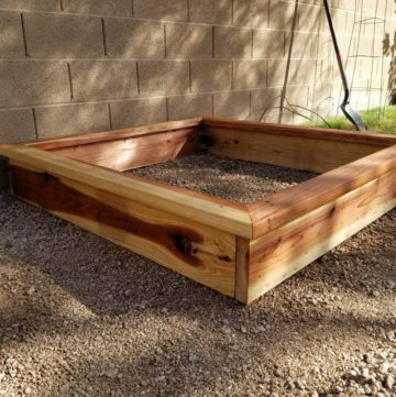 Finished garden box