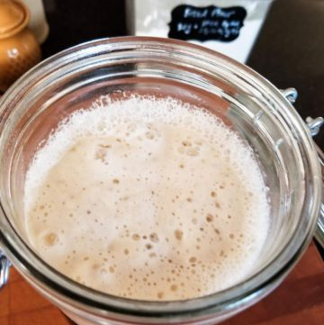 Sourdough starter - bubbles/refreshed!