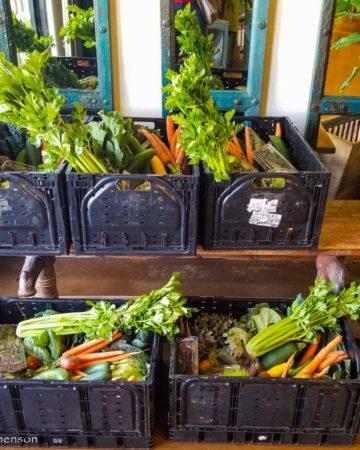 farmer's market produce baskets