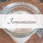 Picture of bubbling sourdough starter representing the fermentation category