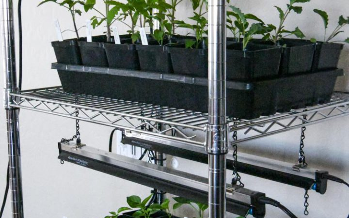 grow station