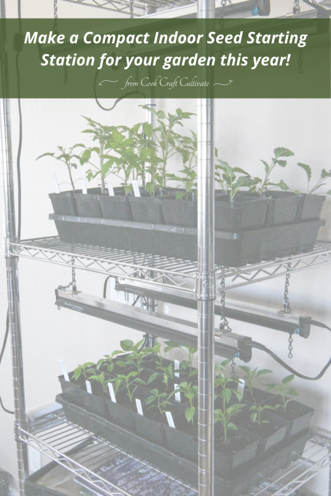 Picture of a rack with grow lights and garden seedlings.